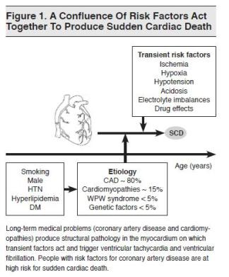 Figure 1. A Confluence Of Risk Factors Act Together To Produce Sudden Cardiac Death Emergency Medical Practice_1
