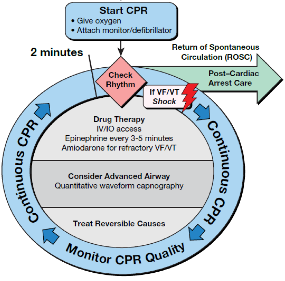 How to achieve Q-CPR | Greater Sydney Area HEMS